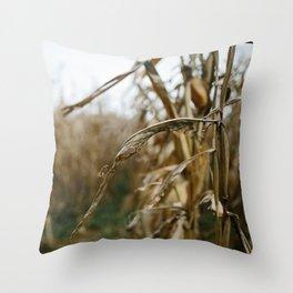 Autumn Cornstalk II Throw Pillow
