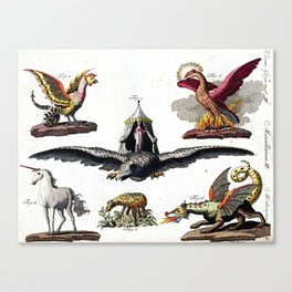 Mythical Creatures Canvas Print