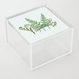 Fern Collage with Light Blue Gray Background Acrylic Box