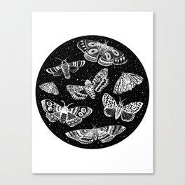 Moths in a nightsky Canvas Print