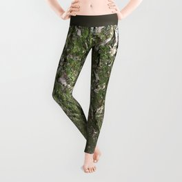 Mossy Tree Love Leggings