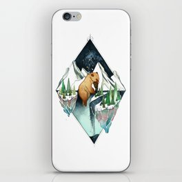 brother bear iPhone Skin