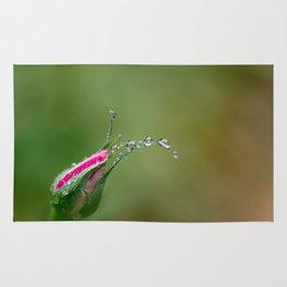 The Bloom Rug