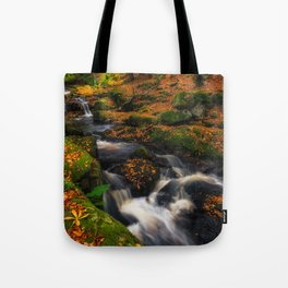 Cloghleagh River in Wicklow Mountains - Ireland (RR249) Tote Bag