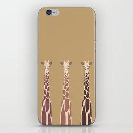 Triple Giraffes iPhone Skin