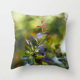 Barberry Color Throw Pillow