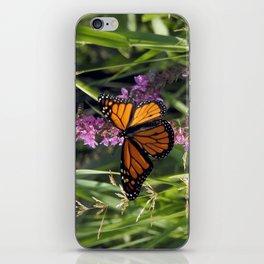 Monarch Splendor iPhone Skin