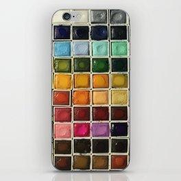 Artist Crack iPhone Skin