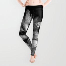 Haworthia Succulent Tintype Leggings