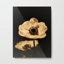 Anemone Flowers In Bloom Metal Print