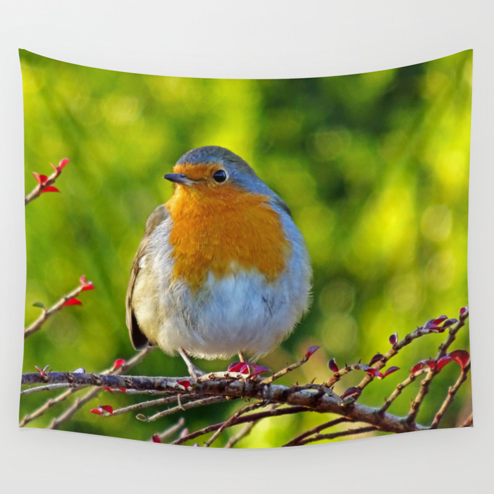Robin Redbreast Wall Tapestry by Catherineogden (TPS8331014) photo