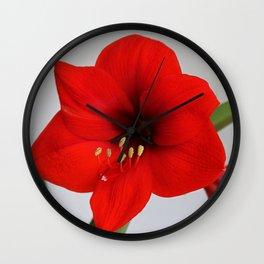 The Red Jewel Wall Clock