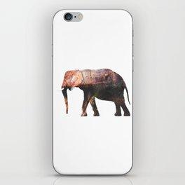 Elephant IV iPhone Skin