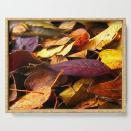 Fall Leaves Close Up Serving Tray