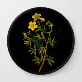Potentilla Fruticosa Mary Delany Vintage Floral Collage Botanical Flower Wall Clock