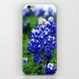 Texas Blue Bonnets iPhone Skin