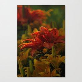 Tiger Lillies at Dusk Canvas Print