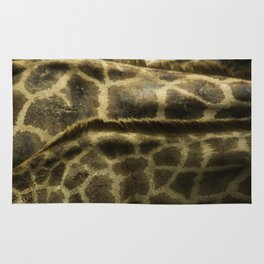 Differences Between Giraffees Rug