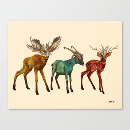 Babes in Woodland (Trio) Canvas Print