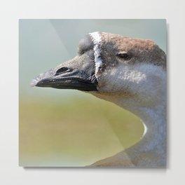 goose Metal Print