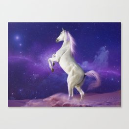 my big pony dreams Canvas Print
