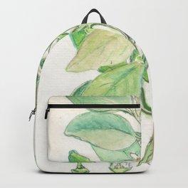 Citrus x Sinensis Backpack