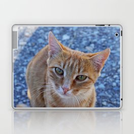 give me a little love Laptop & iPad Skin
