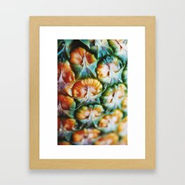 A study in pineapple Framed Art Print