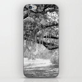 New Orleans Oak Tree iPhone Skin