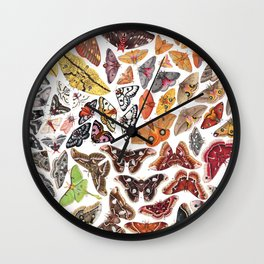 Saturniid Moths of North America Wall Clock