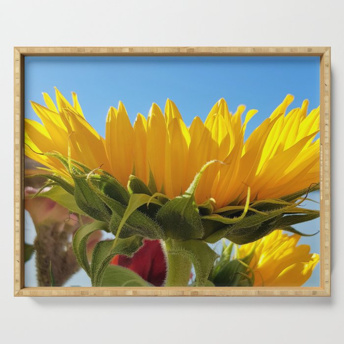 A Summer Bouquet 17 - sunflowers, roses and cockscomb Serving Tray
