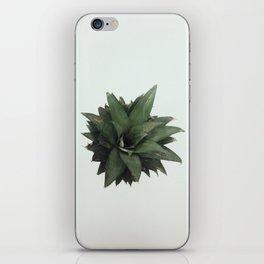 Pineapple Head iPhone Skin