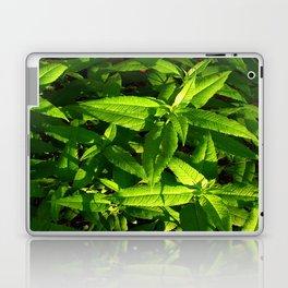 Plants a Plenty Laptop & iPad Skin