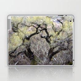 Cottonwood in Spring Laptop & iPad Skin