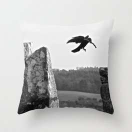 nesting on blarney Throw Pillow