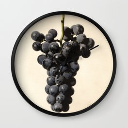 Vintage Concord Grapes Illustration Wall Clock