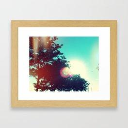 Stunning Sunning Framed Art Print