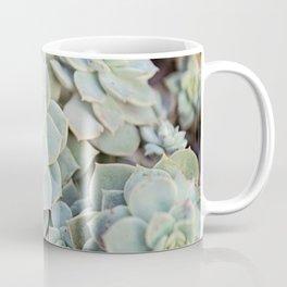 Echeveria Derenbergii Coffee Mug