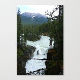 Sunwapta Falls View Canvas Print