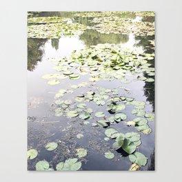 Monet's Water Lilies Canvas Print
