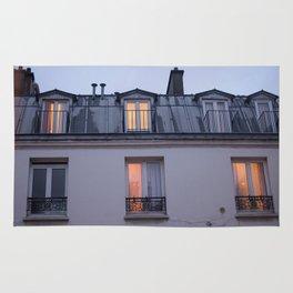 Through the window, light Rug