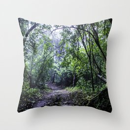Misty Trail in the Rainforest of the Chocoyero-El Brujo Nature Reserve in Nicaragua Throw Pillow