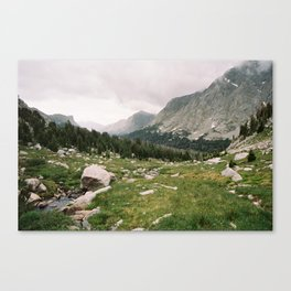 Lizard Head Meadows -- The Cirque of the Towers Canvas Print