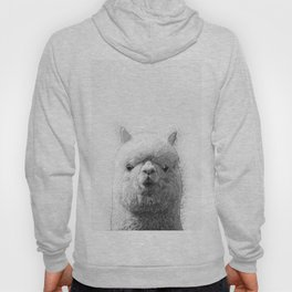 Alpaca Hoody