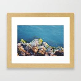 Shore rocks Framed Art Print
