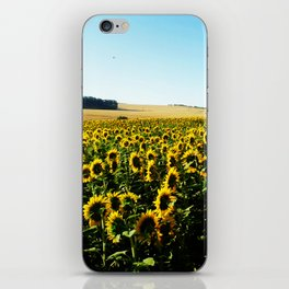 Field of Sunflowers iPhone Skin