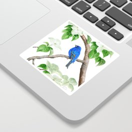 Royal Blue-Indigo Bunting in the Dogwoods by Teresa Thompson Sticker