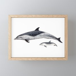 Pantropical spotted dolphin Framed Mini Art Print