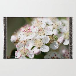 Aronia Blossoms Rug