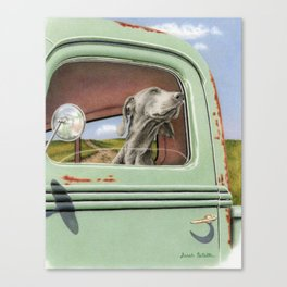 Goin' For A Ride Canvas Print